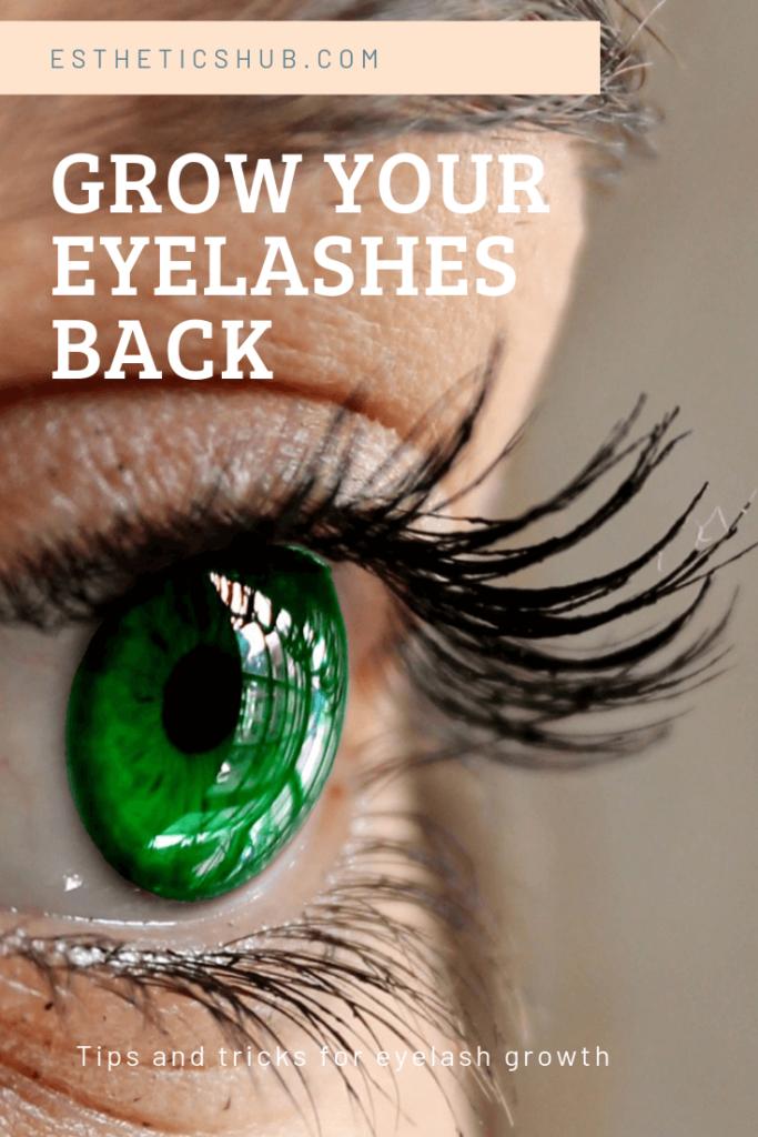 bf5a309ab0c Eyelashes 101: How Long Does it Take Eyelashes to Grow Back ...